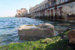 בריכות בטון אקולוגיות בנמל יפו