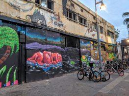 בואו לצפות ביצירות 'פטרון האמנות - שבוע אמנות רחוב בינלאומית'