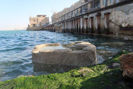 המחר של הים: סיורי חדשנות בנמל העתיק בעולם